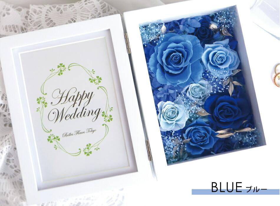 プリフォトスプレッドL ブルーの画像