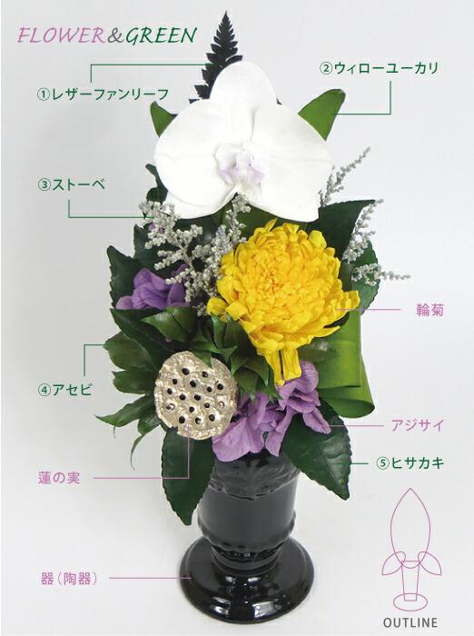 蓮華 花材の画像