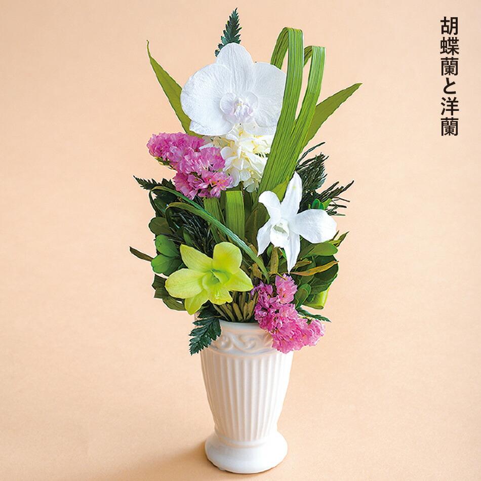 胡蝶蘭と洋蘭