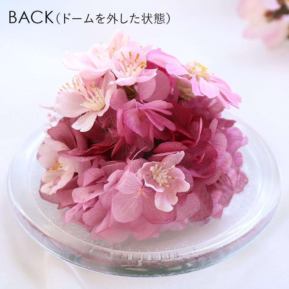 桜のガラスドームS 背面
