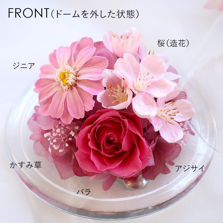 桜のガラスドームS 前面