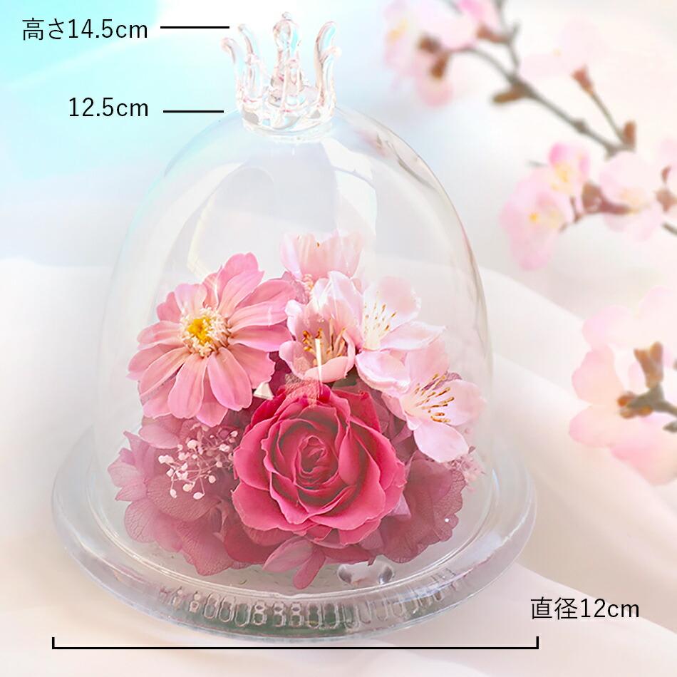 桜のガラスドームSのサイズ、ポイント