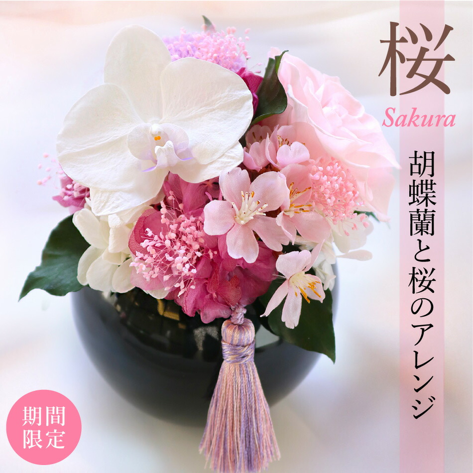 胡蝶蘭と桜のアレンジ メイン画像