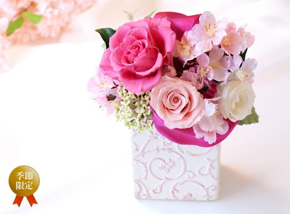 スプリング 桜(さくら)の画像