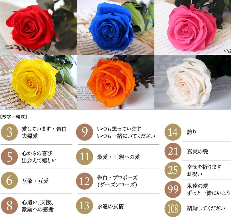 バラの花言葉・輪数の意味