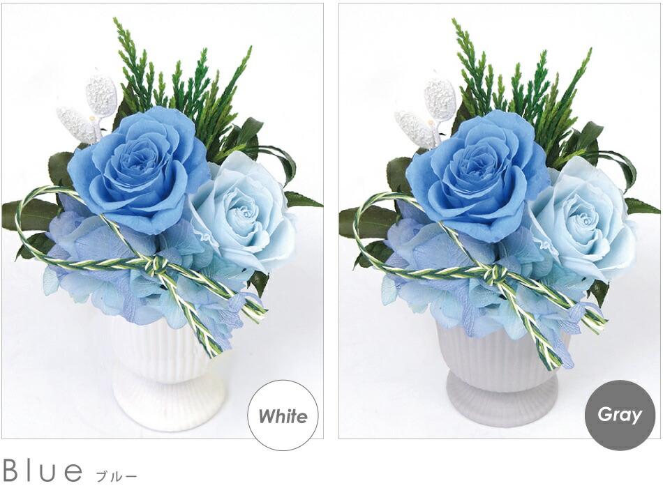 対花 ブルーの画像
