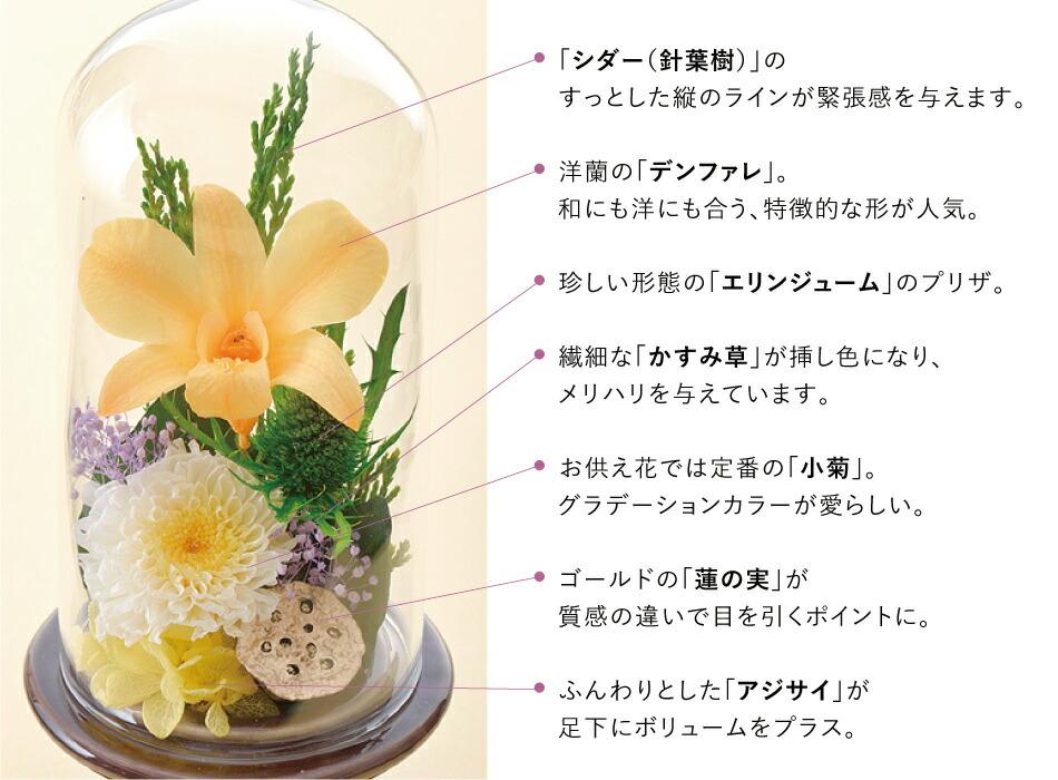 鼓 お花の種類の画像