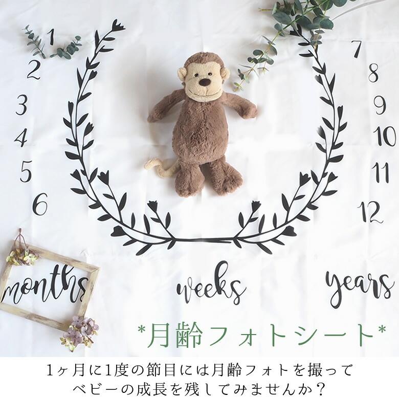 【出産祝い】月齢フォトシート
