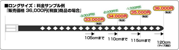 ロングサイズ:料金サンプル例