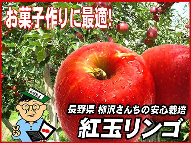 長野県北佐久郡立科町の柳沢さんの紅玉リンゴ