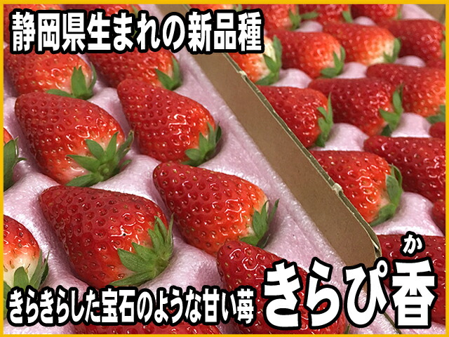 きらぴ香 きらぴか イチゴ 苺 いちご