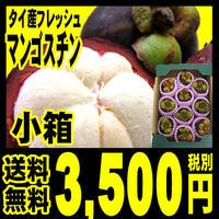 マンゴスチン 生 フレッシュ フルーツ 果物
