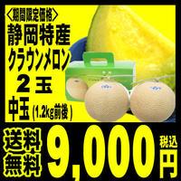 【送料無料9,000円】静岡産クラウンマスクメロン中玉-2玉(1.2キロ前後)