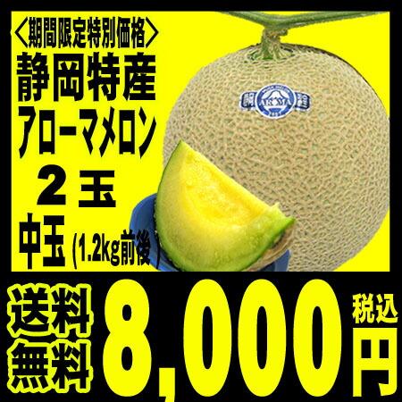 【送料無料7,000円】静岡産アローママスクメロン中玉-1玉(1.2キロ前後)