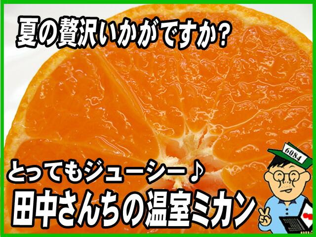 ぷりっぷりの果肉がたまりません>_<