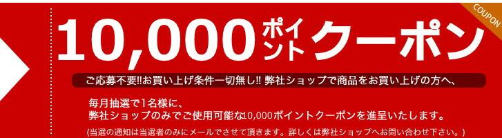 5000ポイントクーポン