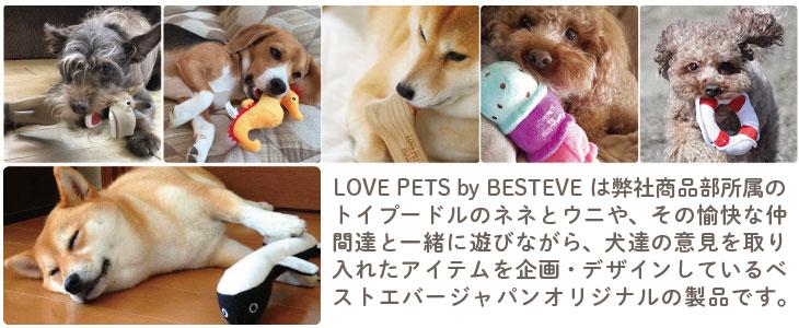 Pet Review 2