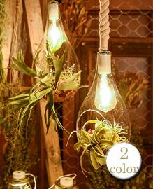 Hanging Light with FAKEGREEN M 【2variation】