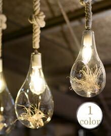 Botanic Hanging Light S Φ126×H240mm