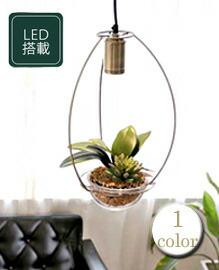 モダングリーンライト アーチ 光触媒LED照明