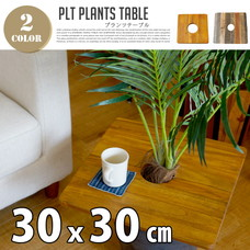PLT Plants Table スクエア30x30cm 【2variation】