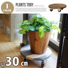 PLT Plants Tray φ30cm φ30×H9cm