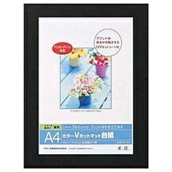 ナカバヤシNakabayashiVカットマット台紙Digio(A4/ブラック)DGVM-A4-D[DGVMA4D]
