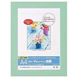 ナカバヤシNakabayashiVカットマット台紙Digio(A4/グリーン)DGVM-A4-G[DGVMA4G]