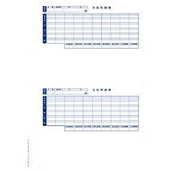 オービックORBIC単票封筒用支給明細書(300枚入:600片)6202[09SP6202]