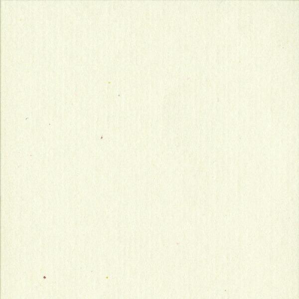 サンワサプライSANWASUPPLYレトロ紙[つやなしマット・A4サイズ/5シート](鳥の子色)JP-MTRT08[JPMTRT08]【wtcomo】