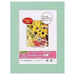 ナカバヤシNakabayashiVカットマット台紙Digio(2L/グリーン)DGVM-2L-G[DGVM2LG]