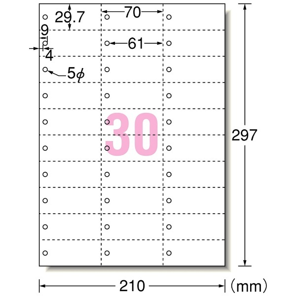 エーワンA-oneマルチカード単語カード穴あきタイプ(A4サイズ・30面・5シート)白無地51163【aoneC2009】