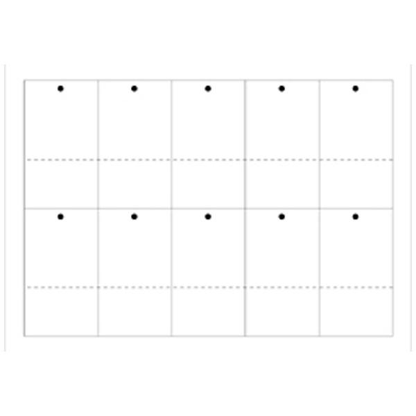 ササガワSASAGAWAプリンタ対応タグ大白(A5サイズ:10面・30シート:300片)44-7100[447100]
