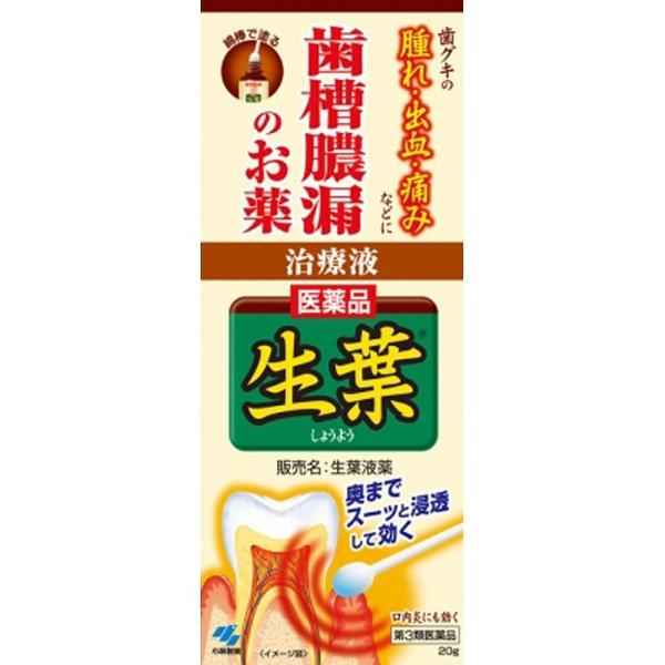 【第3類医薬品】生葉液薬(20g)【wtmedi】小林製薬Kobayashi