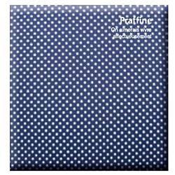 ナカバヤシNakabayashiDigioデジタルフリーアルバム「プラフィーネ」(デミサイズ/ブルー)ア-DP-144-B[アDP144B]