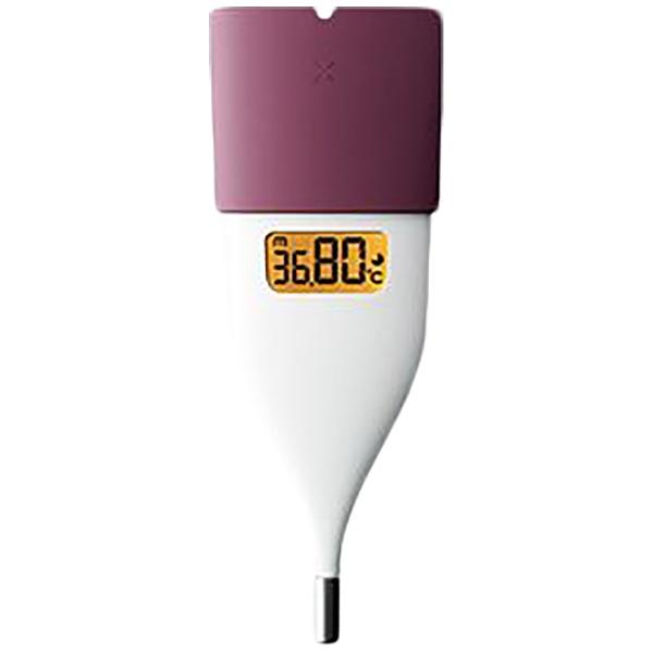 体温計 基礎