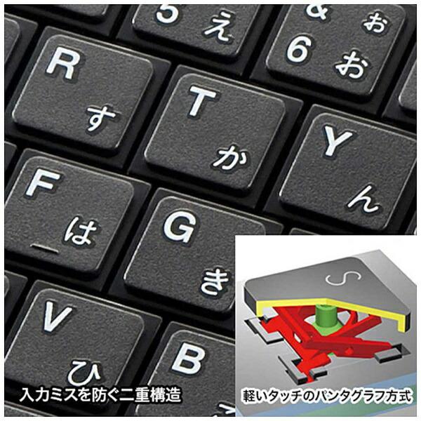 サンワサプライSANWASUPPLYキーボードスリムブラックSKB-WL22BK[USB/ワイヤレス][SKBWL22BK]