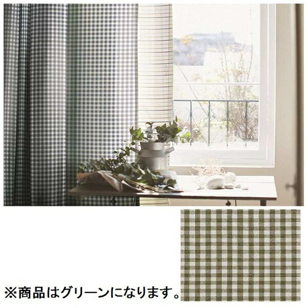 スミノエSUMINOEドレープカーテンギンガム(100×200cm/グリーン)【日本製】[G1020100X200]
