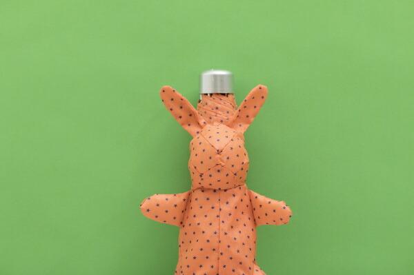 ウォーターフロント【折りたたみ傘】レディース折傘Rabbitケース5段折傘ACRB-5F50-UH50cm【色指定不可】[ACRB5F50UH]