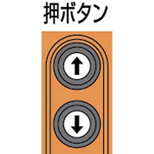 キトーKITOセレクト電気チェーンブロック1速単相200V240kg(S)x3mEDX24S