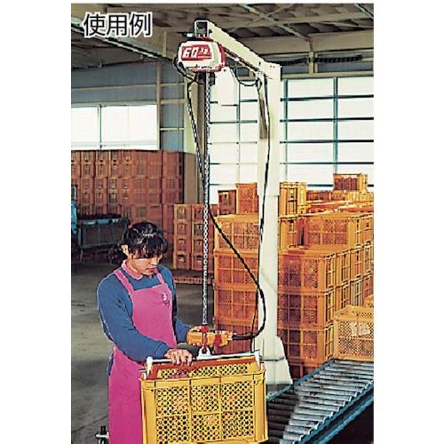 キトーKITOセレクト電気チェーンブロック2速240kg(ST)x3mED24ST