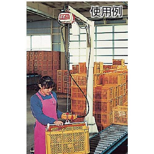 キトーKITOセレクト電気チェーンブロック1速240kg(S)x3mED24S