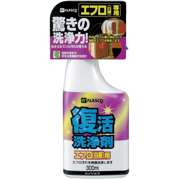 カンペハピオKanpeHapio復活洗浄剤300mlエフロ用414007300