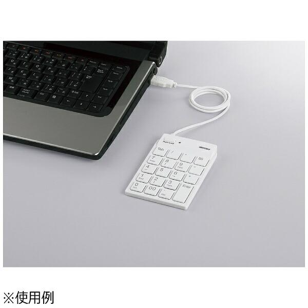 BUFFALOバッファローテンキーBSTK11シリーズホワイトBSTK11[USB/有線][BSTK11WH]
