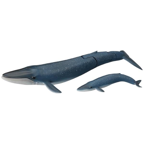 タカラトミーTAKARATOMYアニアAL-11シロナガスクジラ親子