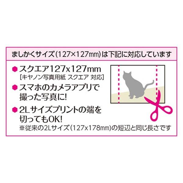 ハクバHAKUBAフォトフレームカレフィス127ましかく(127×127mm)(ブラウン)FSQCF-127BR[FSQCF127BR]
