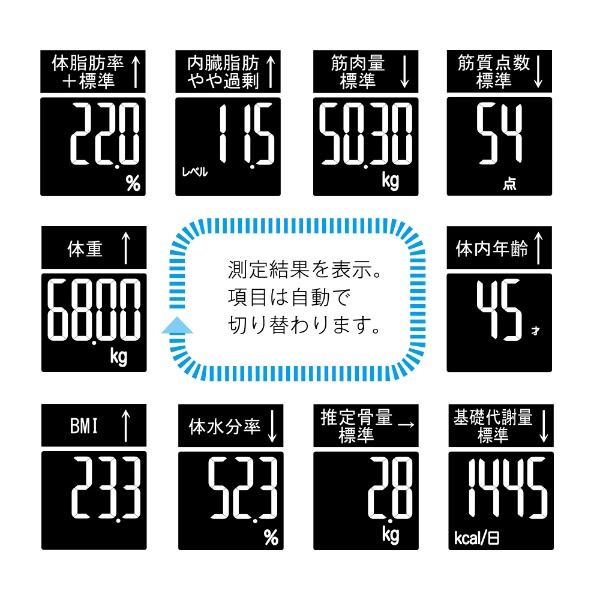 タニタTANITARD-503体組成計innerscanDUAL(インナースキャンデュアル)シルバー[体重計体脂肪計RD503SV]