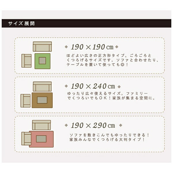 イケヒコIKEHIKOラグ更科II(190×290cm/ブラウン)