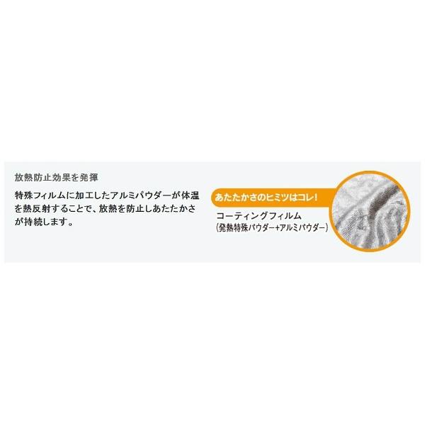 オーシンOSHIN【敷パッド】エバーウォーム敷パッドシングルサイズ(100×200cm/ブラウン)【日本製】