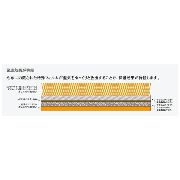 オーシンOSHIN毛布エバーウォーム(ダブルサイズ/180×200cm/キャメル)【日本製】